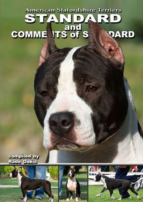 Rade Amstaff Comments